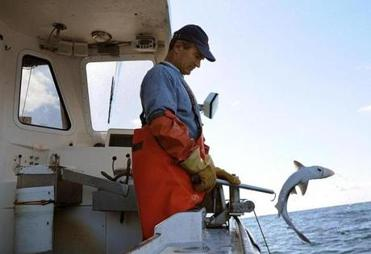 Eric Hesse said area fishermen are hurt when cheaper seafood is imported  and sold as locally caught.